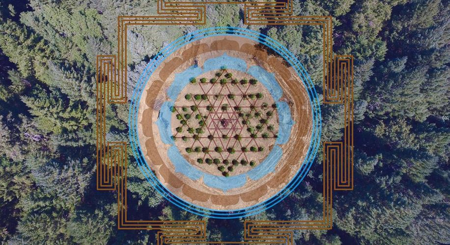 Why Were Grow Cannabis In The Form Of Sacred Geometry | Pure Farms