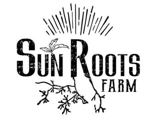 sun-roots