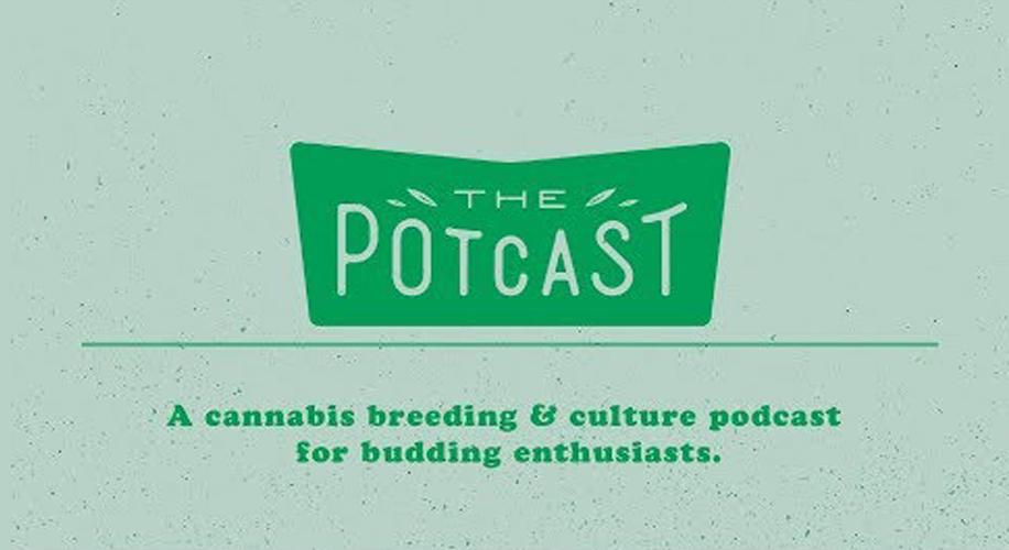 podcast-big